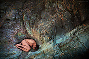 """Nominee in 14th (2021) International Colour Awards (Nudes category)<br /> <br /> Selected Print for the IN:SIGHT (Washington Green) New Artists Competition 2015<br /> <br /> """"I was fascinated by the multitude of different colours in the rock and the natural uterus shape within it's folds. The veins of rock are feeding the womb and the fact that life itself was born out of molten rock, is still mind-blowingly incredible.<br /> <br /> There is a melancholy about the foetal position of this ageing man. He perhaps represents many for whom hope about the future, the sense that we have some important role on this planet, will maybe never be realised. We are still waiting to grow and be nurtured even in later life. <br /> <br /> As a species, we seem to have learned little about how to live at one with the planet, the planet that gave us life and without which we do not exist. Ultimately, perhaps all we ever have are wild dreams and a tenacious need to feel relevant during this blip on earth we call life"""""""