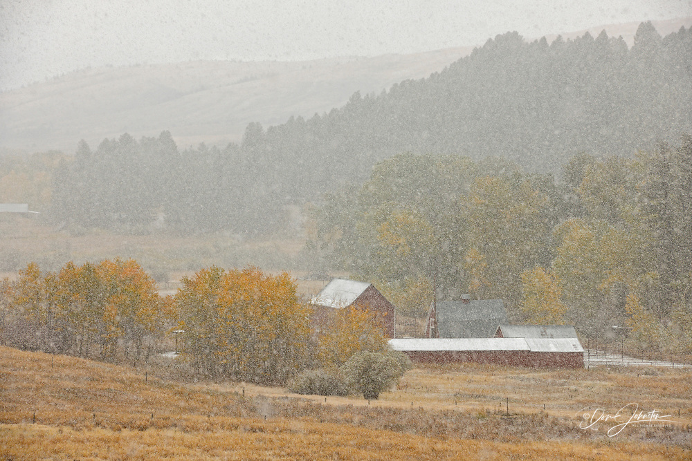 A dusting of early snow on ranchland along the Bracket Creek Road, Bozeman, Montana, USA