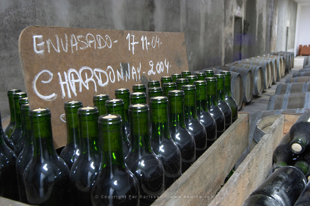 Bottles of Chardonnay 2004 standing in wooden crates. Bodega Plaza Vidiella Winery, Las Brujas, Canelones, Uruguay, South America