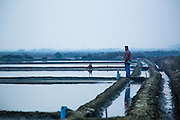 17 JANUARY 2013 - SAMUT SONGKHRAM, SAMUT SONGKHRAM, THAILAND: A worker looks out over a still flooded salt field in Samut Songkhram.  The salt fields around Samut Songkhram are some of the most productive salt fields in Thailand. Salt is gathered on a seasonal basis. The fields, which lie near the Gulf of Siam, are flooded with sea water during the last half of the rainy season and then as the water evaporates off after the rainy season migrant workers collect the salt. In 2013 the salt harvest was delayed by months because it continued to rain well after the traditional end of the rainy season.   PHOTO BY JACK KURTZ