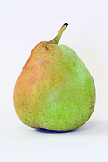 A ripe pear on white background