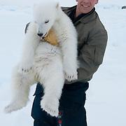 Steve Amstrup with polar bear cub. Beaufort Sea, Alaska