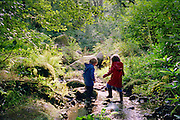 A four year old boy and five year old girl playing in a stream in Devon