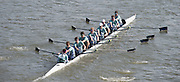 Chiswick, London, Great Britain.<br /> Eton College. Champ eight, competing at the 2016 Schools Head of the River Race, Reverse Championship Course Mortlake to Putney. River Thames.<br /> <br /> Thursday  17/03/2016<br /> <br /> [Mandatory Credit: Peter SPURRIER;Intersport images]