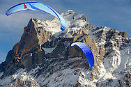 Paragliders in the Swiss Alps near the Wetterhorn mountain above the Grindelwald valley - Swiss Alps - Switzerland