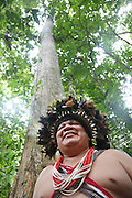 Chief Almir Narayamogo in the Surui territory, wearing his feathered headdress inside primary rainforest interior.<br /><br />An Amazonian tribal chief Almir Narayamogo, leader of 1350 Surui Indians in Rondônia, near Cacaol, Brazil, with a $100,000 bounty on his head, is fighting for the survival of his people and their forest, and using the world's modern hi-tech tools; computers, smartphones, Google Earth and digital forestry surveillance. So far their fight has been very effective, leading to a most promising and novel result. In 2013, Almir Narayamogo, led his people to be the first and unique indigenous tribe in the world to manage their own REDD+ carbon project and sell carbon credits to the industrial world. By marketing the CO2 capacity of 250 000 hectares of their virgin forest, the forty year old Surui, has ensured the preservation, as well as a future of his community. <br /><br />In 2009, the four clans and 25 Surui villages voted in favour of a total moratorium on logging and the carbon credits project. <br /><br />They still face deforestation problems, such as illegal logging, and gold mining which causes pollution of their river systems