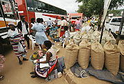 "Mopane worm merchants in the central market of Thohoyandou serve as the intermediaries between the worm wholesalers and individual customers. ""Mopane"" refers to the mopane tree, which the caterpillar eats. Dried mopane worms have three times the protein content of beef and can be stored for many months. Eaten dry the worms are hard, crispy, and woody tasting. Thohoyandou, South Africa. Image from the book project Man Eating Bugs: The Art and Science of Eating Insects."