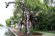 JILIN, CHINA - AUGUST 11: (CHINA OUT) <br /> <br /> Giraffe-shaped Water Crane<br /> <br /> A giraffe-shaped water crane for sprinkling truck's water supplying is seen on August 11, 2014 in Jilin, Jilin province of China.<br /> ©Exclusivepix