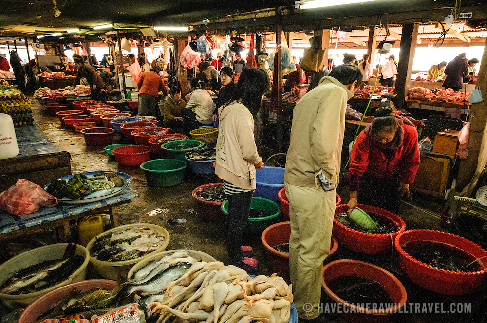 Vendors at the large morning market in Phonsavan in northeast Laos sell fish and fresh poultry. Although the country is landlocked, river fishes are a common food in Laos. The people of the region are predominantly of Hmong ethnicity.