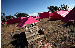 Dec 03 2007. New Orleans, Louisiana. Lower 9th Ward.<br /> Brad Pitt revisits the Lower 9th ward, devastated by Hurricane Katrina to present 'Make it Right' where architects' designs are unveiled to the public. The pink project sprung up over a couple of days, where mock housing in shocking bright pink is strewn around the still devastated Lower 9th Ward.  Here an old set of steps to where a house once stood is surrounded by pink 'houses.'<br /> Photo credit; Charlie Varley.