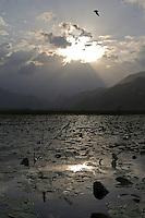Lake Skadar, Landscape, Montenegro