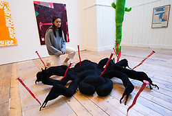 Royal Academy of Arts<br /> Premiums Interim Exhibition<br /> Emerging Artists show <br /> Weston Studio and The McAulay Gallery, Royal Academy of Arts, London, Great Britain <br /> 13th February 2020<br /> Press photo call <br /> <br /> 8 Legs, 2 Fangs, An attitude 2019 <br /> By Millie Layton <br /> (Spider)<br /> <br /> Bladder Trap, 2020 <br /> By Millie Layton <br /> (Tall green sculpture) <br /> <br /> An exhibition of new work by the UK's freshest artistic talent, the second-year students in the Royal Academy Schools,<br /> <br />  <br /> Works by 16 artists in a variety of media will be exhibited across the Weston Studio and The McAulay Gallery. Highlights include a monumental spider sculpture and an imposing nine-foot green creature by Millie Layton.<br />  <br /> Premiums Interim Exhibitions provides an opportunity to view new work by artists at the interim point of their postgraduate study at the UK's longest established art school, the RA Schools. The RA Schools have been an integral part of the Royal Academy since its foundation in 1768, offering the only free three-year postgraduate programme in Europe. <br />  <br /> Premiums Interim Projects at the Royal Academy of Arts, London, will run from 13 February – 11 March 2020.<br />  <br /> <br />  <br /> Photograph by Elliott Franks
