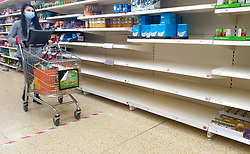 © Licensed to London News Pictures. 20/04/2020. London, UK. A shopper wearing a face mask walks past empty shelves of flour in Sainsbury's supermarket store in north London. According to the National Association of British and Irish Millers, sales of flour have increased since the coronavirus outbreak and lockdown and a shortage of small bags in which to put flour, is partly to blame for the lack of flour in stores. Photo credit: Dinendra Haria/LNP