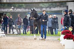 Verwimp Jarno, BEL, Tabries<br /> Mondial du Lion - Le Lion d'Angers 2019<br /> © Hippo Foto - Dirk Caremans<br />  16/10/2019