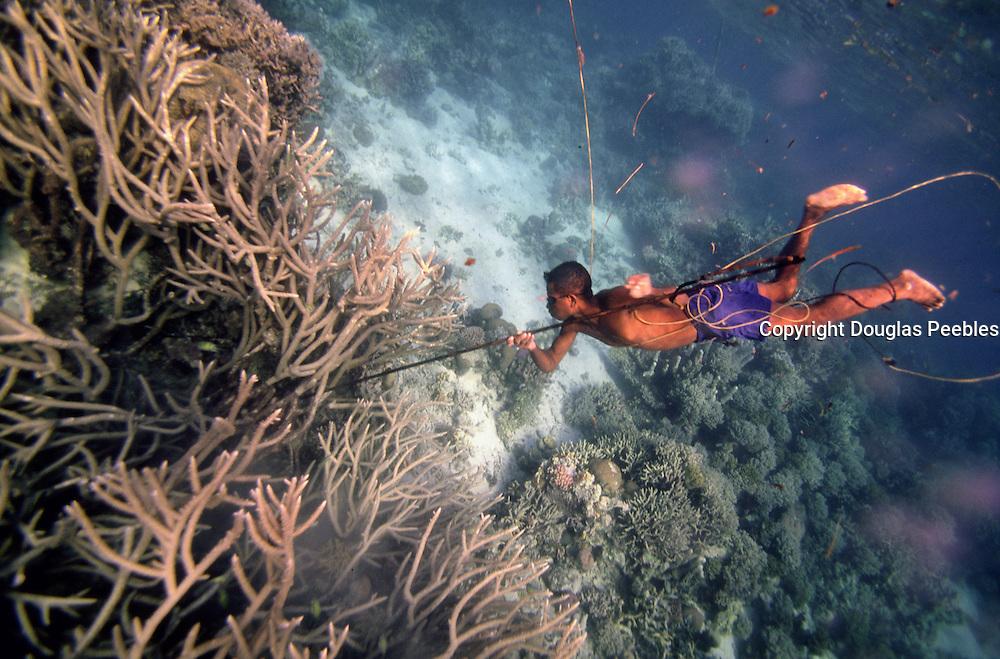 Papua New Guinea, Fergusson Island, spearfisherman<br />