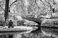 Japanese Gardens in the Fort Worth Botanical Gardens photographed in 720 nm infrared