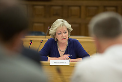 @Licensed to London News Pictures 05/06/2014.Council Chamber, Sessions House, Maidstone, Kent. Anne Barnes Kent's Police and Crime Commissioner discussing the allegations surrounding the Channel 4 fly-on-the-wall documentary and its effect on Kent Police at a meeting of Kent and Medway Police and Crime Panel held in Maidstone today 05/06/14. Photo credit: Manu Palomeque/LNP