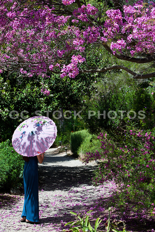 Young Woman Strolling In The Garden