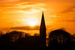 © Licensed to London News Pictures. 04/01/2017. Baldersby Saint James UK. Birds fly over St James's church in the North Yorkshire village of Baldersby Saint James at sunrise this morning. Photo credit: Andrew McCaren/LNP