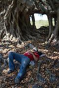 A central american migrant takes a rest in La Palma, Mexico. (Photo: Prometeo Lucero)