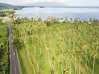 Aerial view Tahiti coastline in French Polynesia.