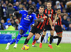 Cardiff City's Oumar Niasse (left) in action during the Premier League match at the Cardiff City Stadium.