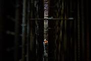 Betonstort in de wand van de startschacht van de tunnel van de Rotterdamsebaan