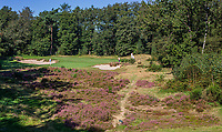 LEUSDEN  -   hole 2, par 3, Golfclub de Hoge Kleij  COPYRIGHT KOEN SUYK