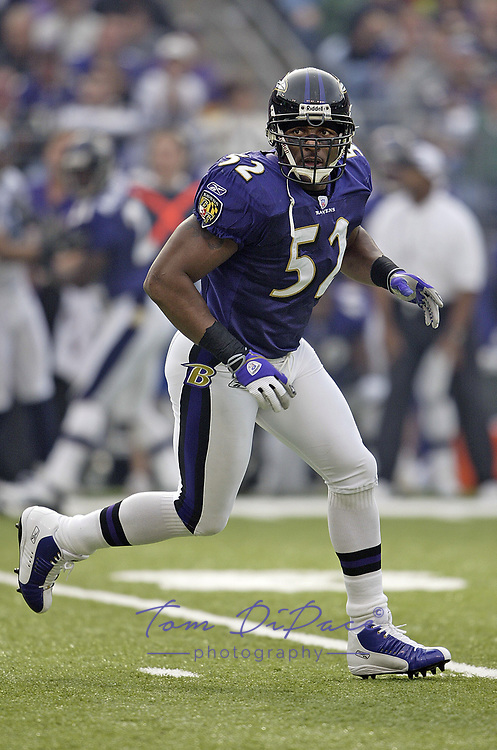 Baltimore Ravens Ray Lewis plays in game against the Seattle Seahawks.<br /> (Tom DiPace)