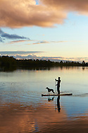 A man and his pet dog drift through calm, reflective lake water on a stand up paddle board during sunset.