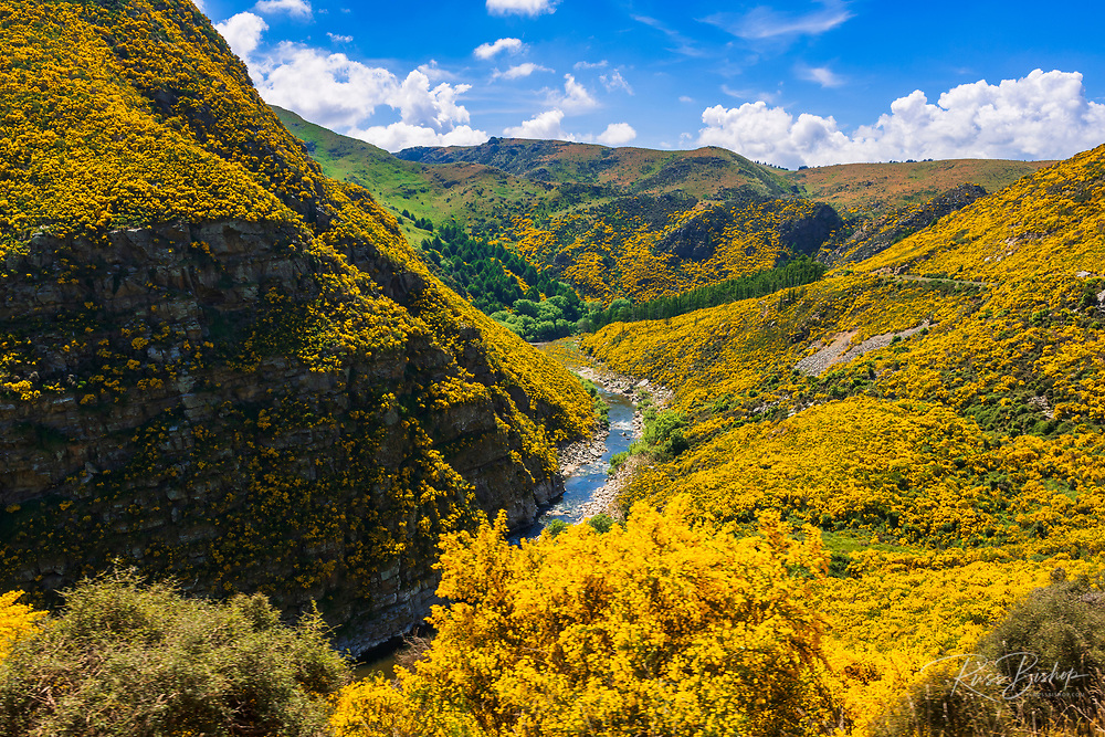 The Taieri Gorge, Otago, South Island, New Zealand