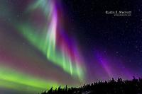 Northern lights (aurora borealis) near Yellowknife, Northwest Territories, Canada
