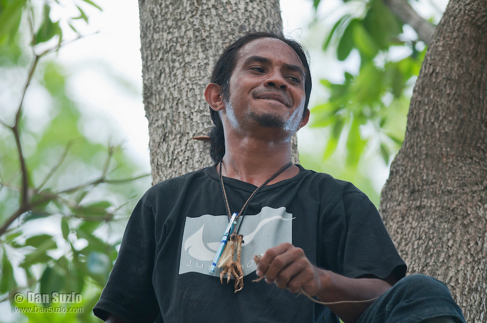 Timorese student Laca Ribeiro captures a Timorese flying dragon, Draco timoriensis, in a tree in the Liquica district of Timor-Leste (East Timor). He is participating in an ongoing survey of Timorese reptiles and amphibians.