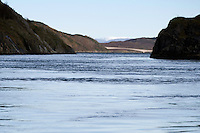 Sundströmmen.Atlantic marine life, Bodö, Norway