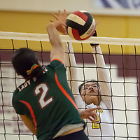 Cougars captain  Shundeen Martin (2), defends the net against the Bears middle hitter Sieyanne Platero (2), in Tohatchi on Tuesday.