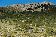 Safari tour operator Velebit Photo Safaris,Paklenica National Park, Velebit Nature Park, Rewilding Europe rewilding area, Velebit  mountains, Croatia