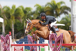 Barrios Pablo (VEN) - G&C Flash<br /> Horseware GP CSI 2*<br /> Wellington 2012<br /> © Hippo Foto - Cealy Tetly