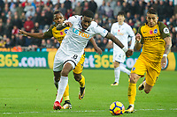 Football - 2017 / 2018 Premier League - Swansea City vs. Brighton & Hove Albion<br /> <br /> Leroy Fer of Swansea City attacks, at The Liberty Stadium.<br /> <br /> COLORSPORT/WINSTON BYNORTH