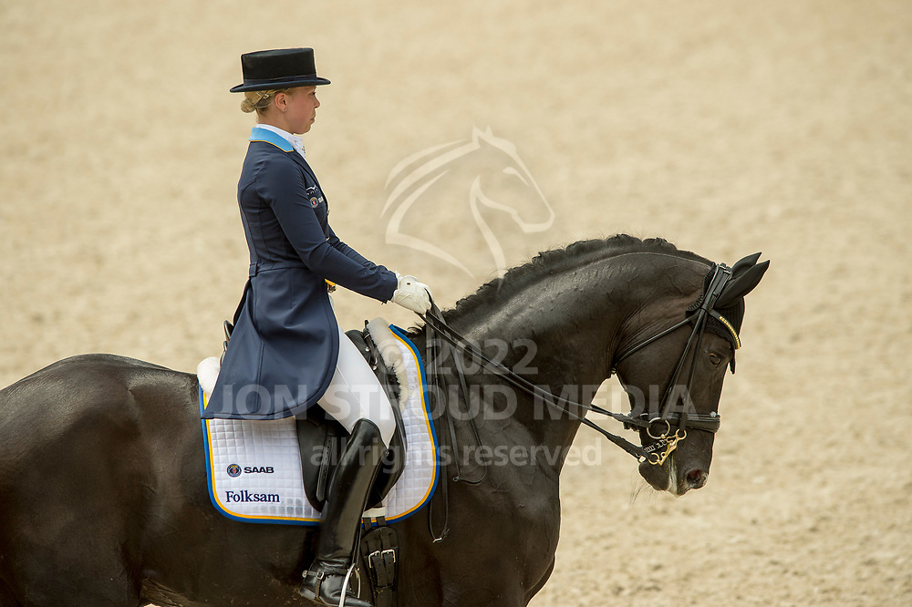Therese NILSHAGEN (SWE) & Dante Weltino OLD- FEI Nations Cup dressage presented by Mercedes-Benz Grand Prix Dressage - CDIO5* - CHIO Rotterdam 2017 - Kralingse Bos, Rotterdam, Netherlands - 22 June 2017