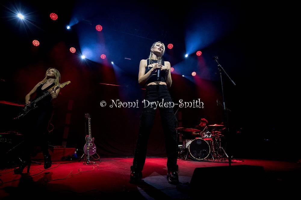DYLAN © Naomi Dryden-Smith