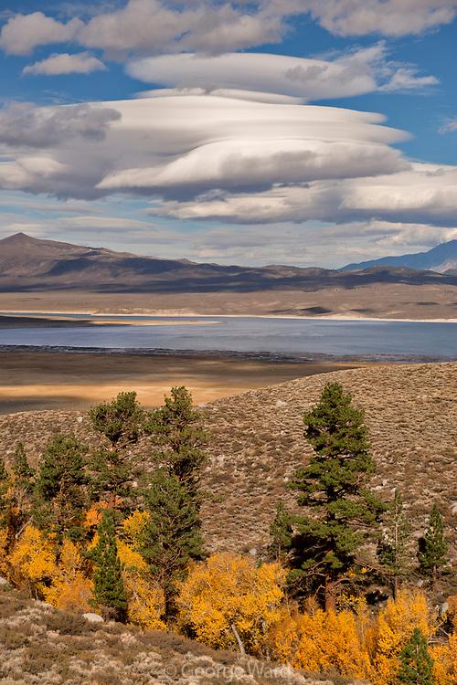 Fall Color, Canyon and Lenticular Clouds over Crowley Lake, Inyo National Forest, Mono County, Caifornia