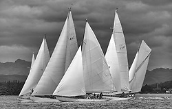 """Close Racing at the start of the passage race to Rothesay off Helensburgh. Mikado, Solway Maid, Clio, Sonata and Viola race for the favoured end.<br /> Limited to ten prints in Black & White, printed on fine art paper 24""""x16"""", stamped and signed."""
