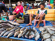 16 JUNE 2016 - PAKSE, CHAMPASAK, LAOS:  A woman and her son sell fish in Dao Heuang Market, the largest market in Pakse. Pakse is the capital of Champasak province in southern Laos. It sits at the confluence of the Xe Don and Mekong Rivers. It's the gateway city to 4,000 Islands, near the border of Cambodia and the coffee growing highlands of southern Laos.     PHOTO BY JACK KURTZ
