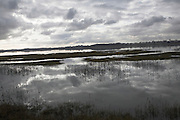 Patterns of light and dark formed by clouds, water and reeds on winter day, River Deben, near Shottisham, Suffolk, England