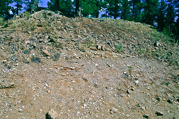 Fossil bearing shale between Bericca caprock and mudstone. Florissant Fossil Beds National Monument, Colorado.