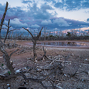After almost three years there are still large areas of dead mangroves in Puerto Rico, like this in Cabo Rojo, after hurrican Maria. Mangroves are a shoreline's best known defence during large storms.