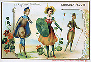 The Language of Flowers.  Nastursium - Tropaeolum majus.  Indifference.  Trade Card for chocolate c1900.