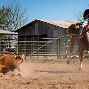 Cowboy in Texas