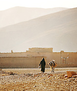 A man in walking with his donkey in a small village near the Todra Gorge, Morocco