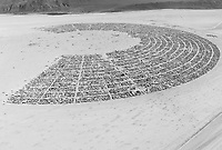Aerial Photo Burning Man 2015